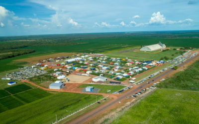 Xingu Seed Network brings innovations on environmental suitability to Dinetec 2020
